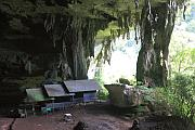 Niah National Park (Niah Cave) - 馬來西亞砂勞越之旅